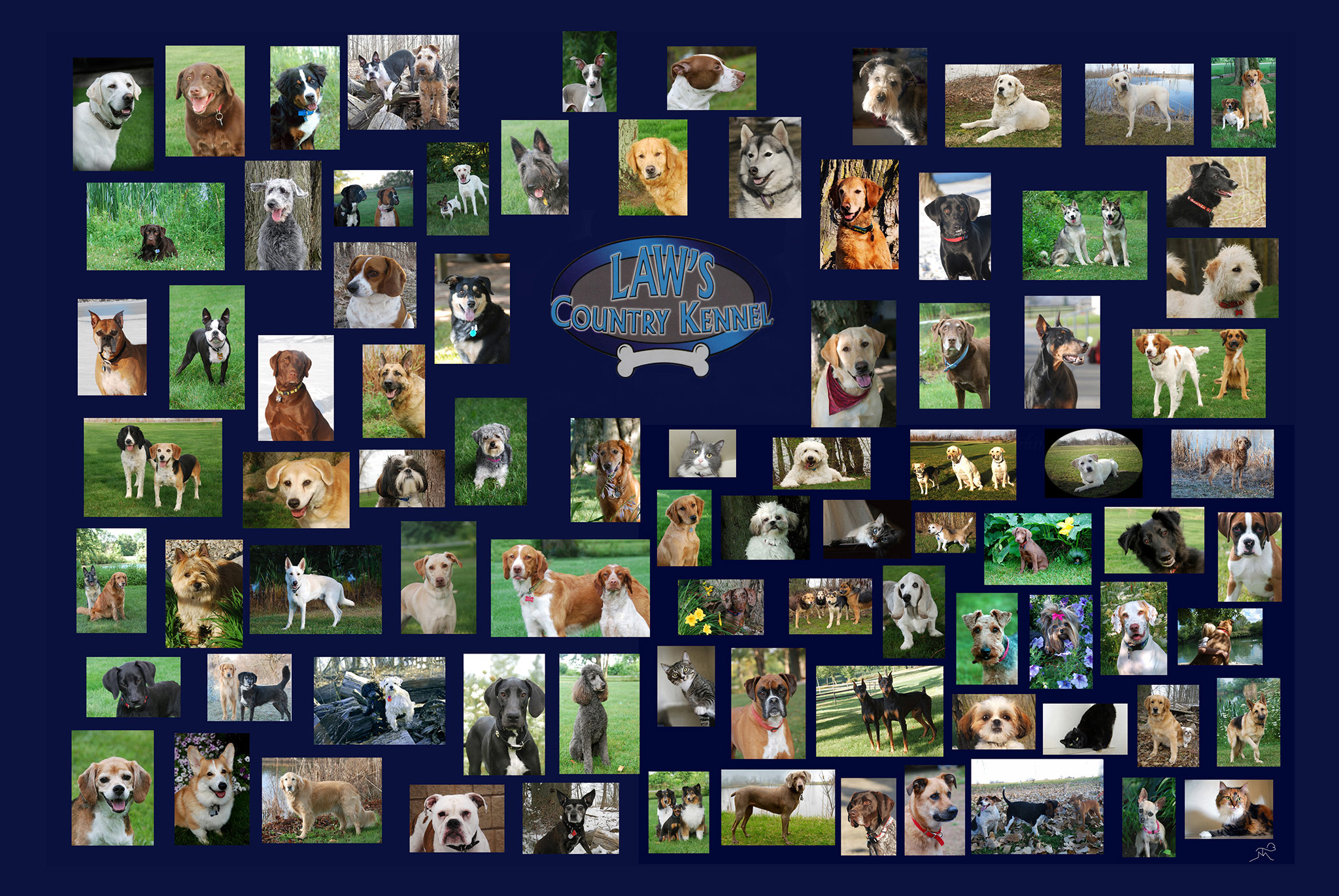 Law's Country Kennel collage